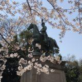 上野の桜 2019 ゆで太郎