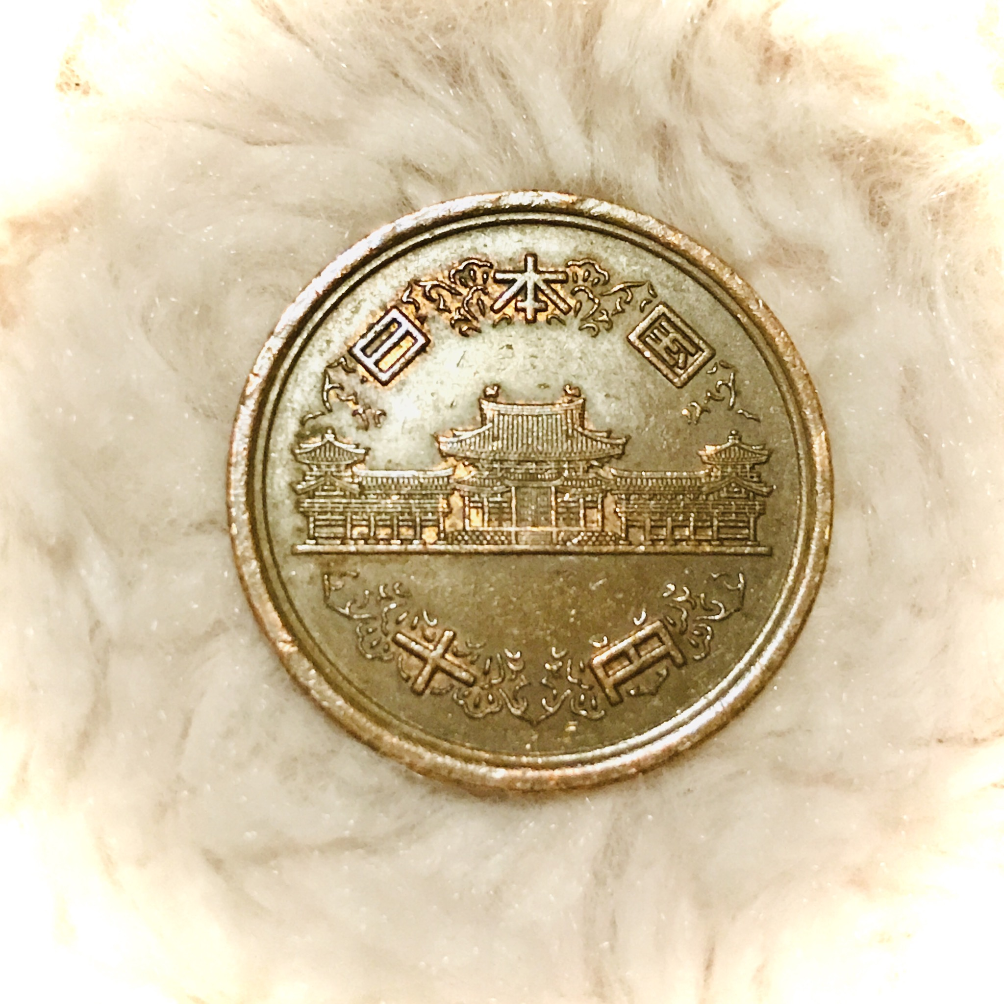 の 方 硬貨 洗い